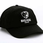 Baseball cap from Big Ass Fans