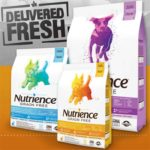 Free Nutrience Grain Dog Food