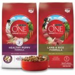 Free Bag of Purina ONE Dog Food