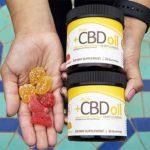 Free PlusCBD Oil Hemp CBD Gummies