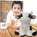 Free Cuddly Cow