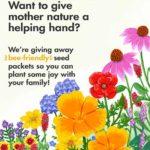 Free Bee-Friendly Flower Seeds